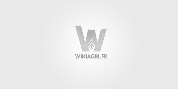 Nicolas Hulot est-il légitime aux états généraux de l'alimentation